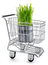 Ecological grocery shopping Stock Photo