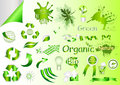 Ecological nature labels and symbols vector set Stock Images
