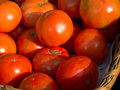 Ecological tomatoes in a market Royalty Free Stock Photography