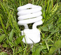 Ecologically Friendly Bulb Stock Photography