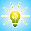 Ecology bulb with rays Royalty Free Stock Photos