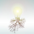 Ecology concept old light bulbs affect the planet Royalty Free Stock Image