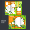 Ecology concept tri fold template brochure with leaf element in green and orange Stock Photo