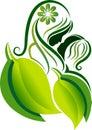 Ecology family logo