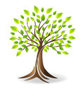 Ecology family tree logo