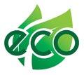 Ecology icon eco icon leaves Royalty Free Stock Photo