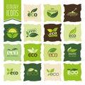 Ecology, organic icon set. Eco-icons Royalty Free Stock Photo