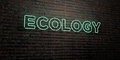 ECOLOGY -Realistic Neon Sign on Brick Wall background - 3D rendered royalty free stock image
