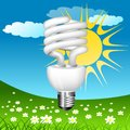 Economical bulb vector illustration Stock Image