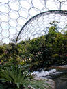 Eden Project - Biome Royalty Free Stock Photos