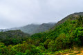 Eden a shoot of el avila mountains from the mirador named Royalty Free Stock Image