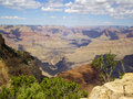 On the edge of Grand Canyon Stock Photos
