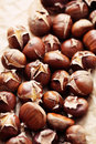 Edible chestnuts Royalty Free Stock Photography