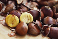 Edible chestnuts nice food and drink Stock Photography