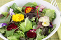 Edible flowers in fresh salad Royalty Free Stock Photo