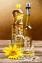 Edible oils various types of in bottles Royalty Free Stock Image