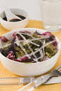 Edible seaweed salad. Stock Image
