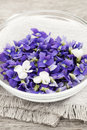 Edible violets in bowl foraged purple and white violet flowers Royalty Free Stock Photography
