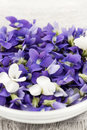 Edible violets in bowl foraged purple and white violet flowers closeup Stock Photos