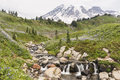 Edith Creek and Mt. Ranier Royalty Free Stock Photo