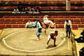 Editorial wrestlers in sumo tournament tokyo may unidentified the grand tokyo japan on january Royalty Free Stock Image