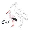 Educational game coloring book stork bird vector
