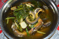 Eel cook soup delicious cooked on plate Royalty Free Stock Photo