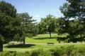 Een dag in het park Stock Foto's