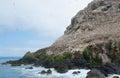 Een deel van een vogelreservaat bij zeven eilanden Royalty-vrije Stock Foto