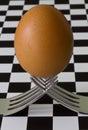 Egg on 2 Forks Stock Photo