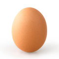 Stock Image Egg