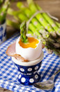 Egg with asparagus Stock Images