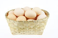The egg Royalty Free Stock Photo