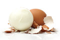 Egg boiled on white background Stock Photos