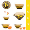 Egg and bowl Royalty Free Stock Images