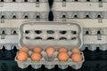 Egg box with nine organic chicken eggs inside Royalty Free Stock Photo