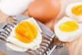 Egg cutter cutted eggs table closeup Royalty Free Stock Image