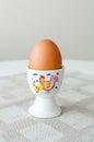 Egg in egg holder Royalty Free Stock Photo