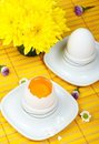 An egg in eggcup Royalty Free Stock Photo