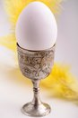 Egg eggcup feathers background Stock Images