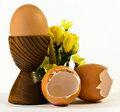 Egg and eggshells Stock Photos