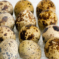 Egg femail quail natural in the packing Royalty Free Stock Photography