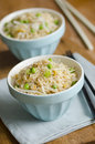 Egg fried rice Stock Photography