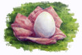 Egg on the grass oil painting Royalty Free Stock Image