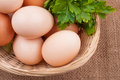 Egg with greens Royalty Free Stock Images