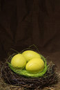 Egg in a nest Royalty Free Stock Photo