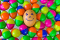 Egg with plastic toy eggs colorful of Stock Photography