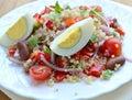 Egg and Quinoa Salad Royalty Free Stock Photo