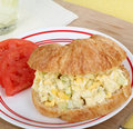 Egg Salad Sandwich Royalty Free Stock Images