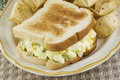 Egg Salad Sandwich and Chips Royalty Free Stock Photo